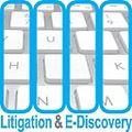 Litigation_e-disc_bug_20110124_