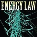 Energy_law_bug_2011_