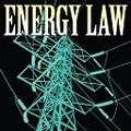 2011_energy_law_bug_