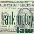 2012_bankruptcy_bug